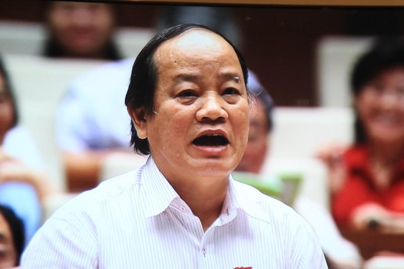 PTT Nguyễn Xuân Phúc trả lời chất vấn về chặt cây, lấp sông  - ảnh 1