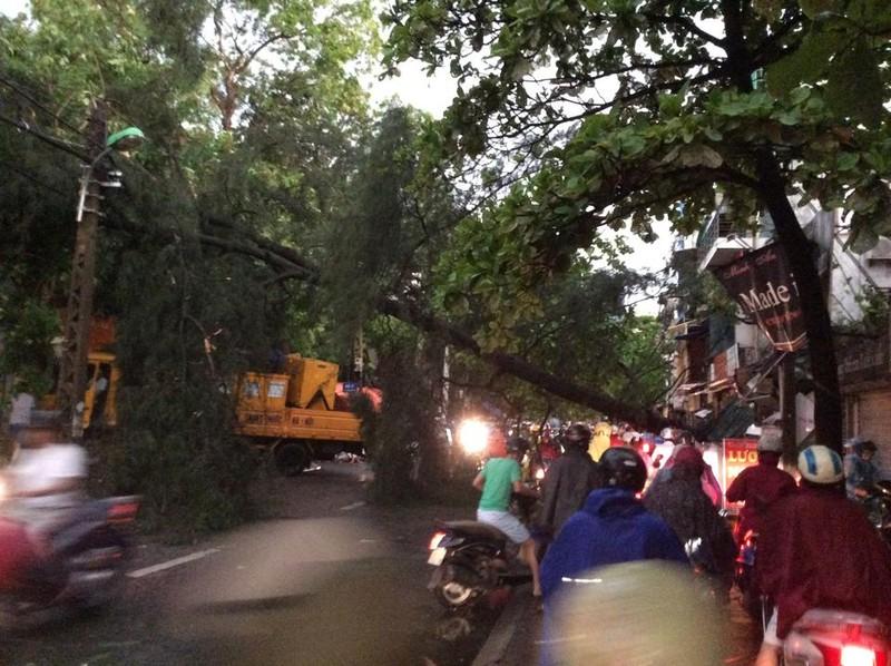 Hà Nội mưa giông kinh hoàng, cây đổ, xe lật, nhà bật móng - ảnh 11