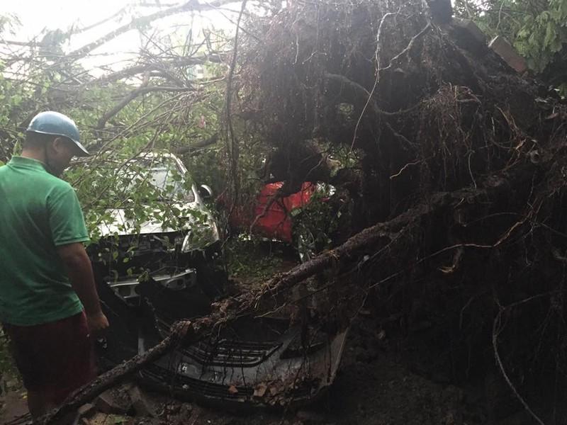 Hà Nội mưa giông kinh hoàng, cây đổ, xe lật, nhà bật móng - ảnh 12