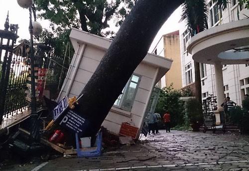 Hà Nội mưa giông kinh hoàng, cây đổ, xe lật, nhà bật móng - ảnh 4