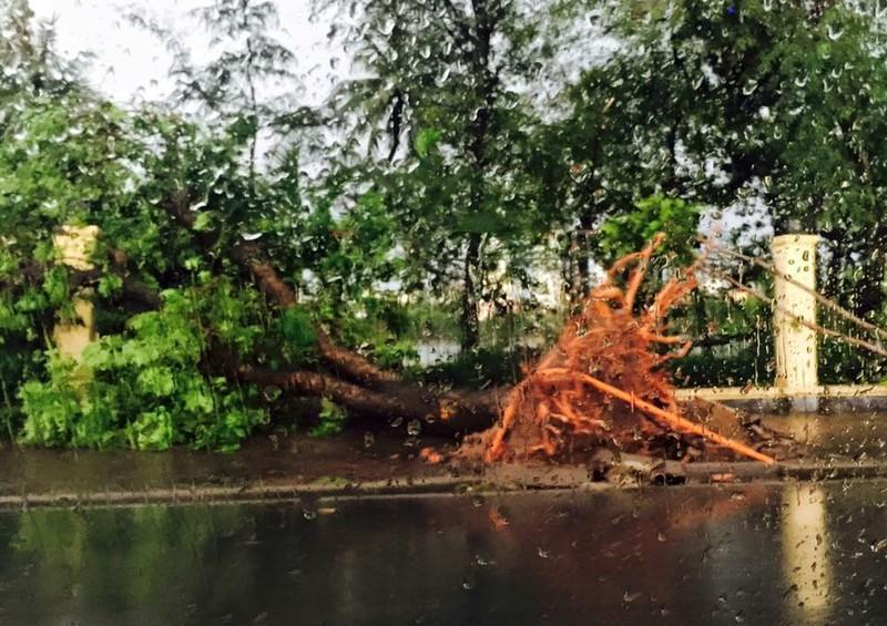 Hà Nội mưa giông kinh hoàng, cây đổ, xe lật, nhà bật móng - ảnh 5