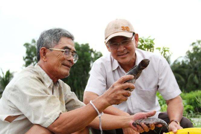 Ông Lê Phương Vũ (trái) khoe với Bí thư Huyện ủy Võ Văn Út giống cá bống tượng gia đình ông thả nuôi thử nghiệm - Ảnh: V.TR.