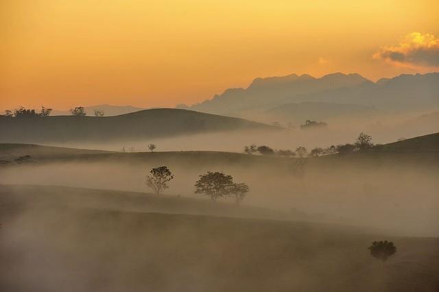 Sương sớm Mộc Châu (Sơn La)