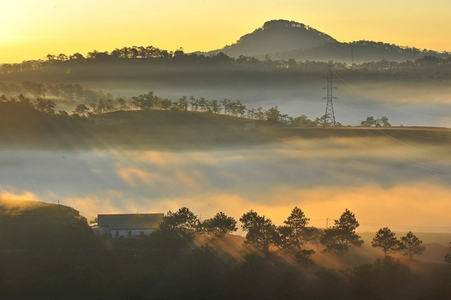 Bình minh trên cao nguyên Langbiang