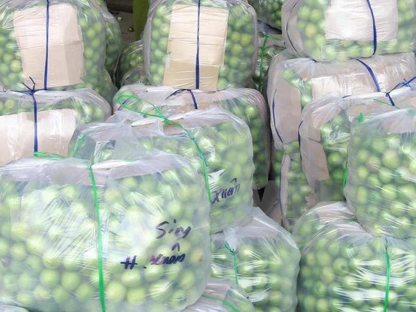Thực hư chuyện 'táo Ninh Thuận giá chỉ 1.000 đồng/kg' - ảnh 1