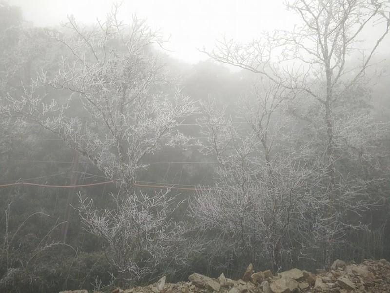 Nhiều nơi ở miền Bắc chìm trong băng tuyết lịch sử âm 6-8 độ C - ảnh 21