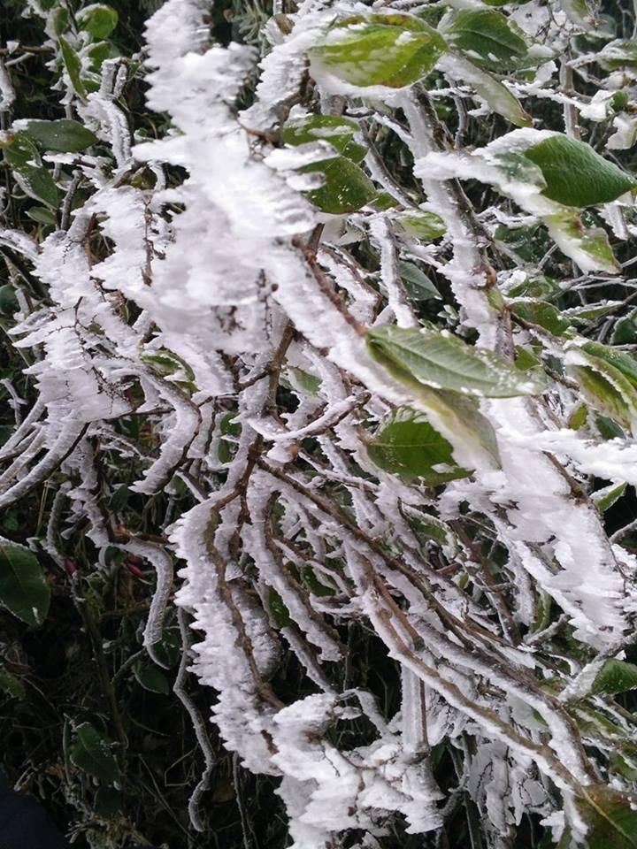 Nhiều nơi ở miền Bắc chìm trong băng tuyết lịch sử âm 6-8 độ C - ảnh 20