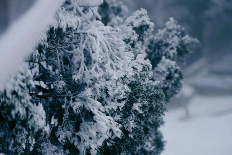 Nhiều nơi ở miền Bắc chìm trong băng tuyết lịch sử âm 6-8 độ C - ảnh 5