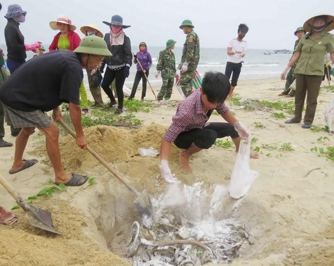 Vụ cá chết bất thường: Bộ Công an điều tra đặc biệt vụ án về môi trường - ảnh 2