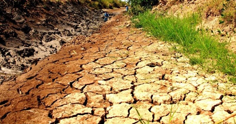 Đồng bằng sông Cửu Long không còn là miền đất trù phú - ảnh 2