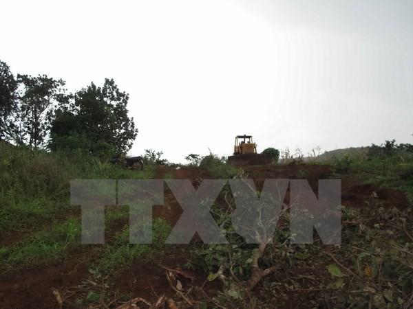 Vụ nổ súng ở Đắk Nông: Thêm 2 nghi can đầu thú - ảnh 1