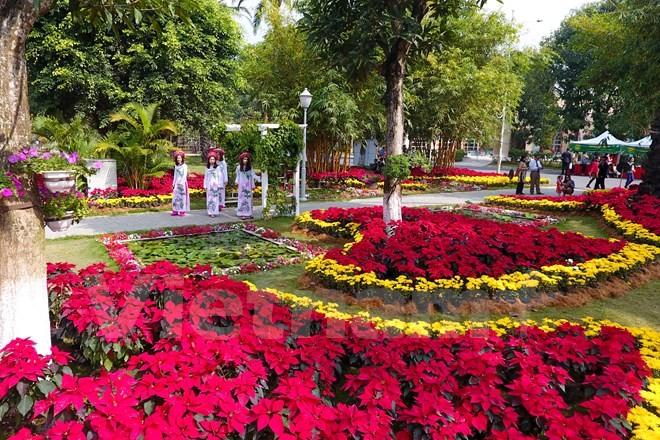 Thích thú với lễ hội hoa xuân lớn nhất miền Bắc - ảnh 5