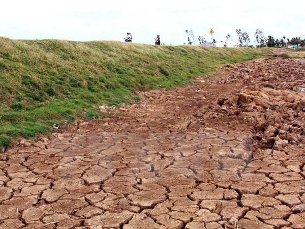 Hạn hán miền Trung: Tại trời chứ không do thủy điện  - ảnh 1