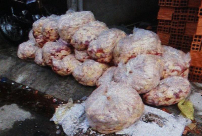 Phát hiện hàng trăm ký đầu gà, thịt heo thối  - ảnh 1