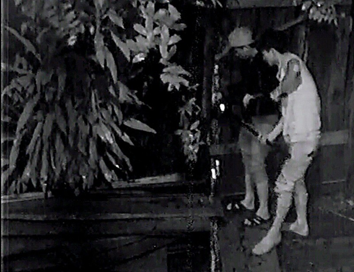 Camera ghi hình 4 thanh niên lái ô tô đi ăn trộm gỗ trong đêm - ảnh 3
