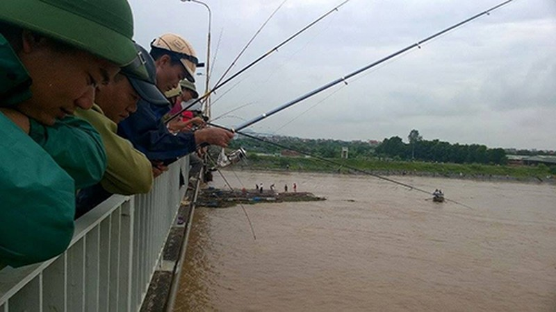 Đổ xô đi câu hàng trăm tấn cá bị sổng trên sông Kinh Thầy - ảnh 2