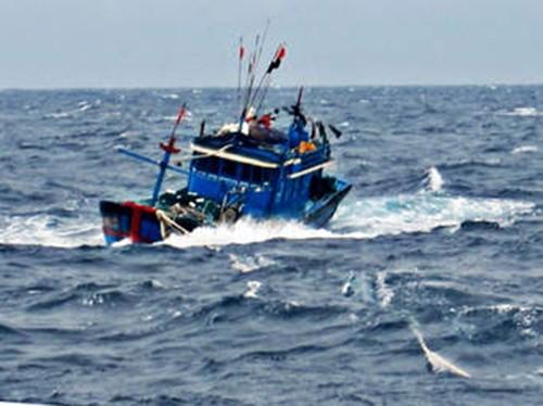 Tàu nước ngoài đâm chìm tàu cá Bình Thuận - ảnh 1