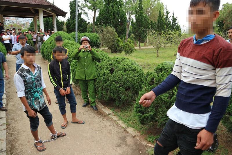 Băng nhóm nhí cướp xe trong công viên ở Đà Lạt - ảnh 1