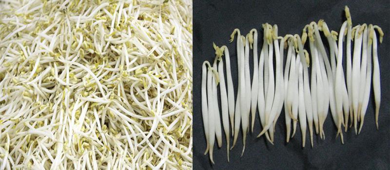 Cách nhận biết rau có hóa chất - ảnh 2