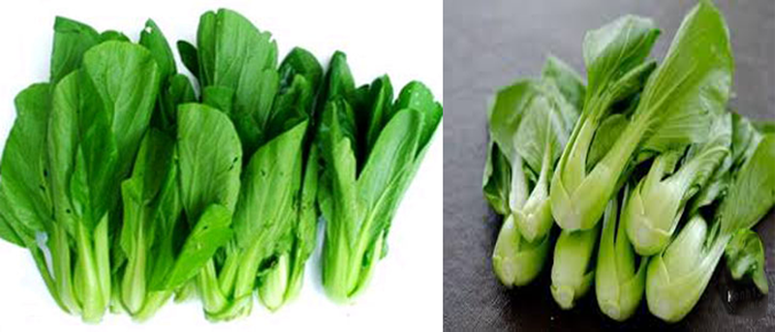 Cách nhận biết rau có hóa chất - ảnh 4