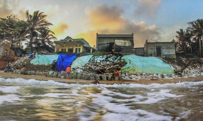 Những bức ảnh về sự biến đổi môi trường sống ở Việt Nam - ảnh 4