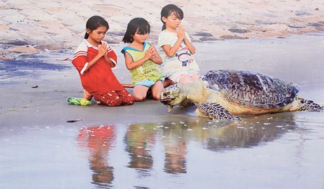Những bức ảnh về sự biến đổi môi trường sống ở Việt Nam - ảnh 10