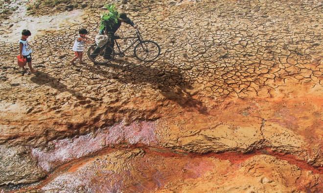 Những bức ảnh về sự biến đổi môi trường sống ở Việt Nam - ảnh 7