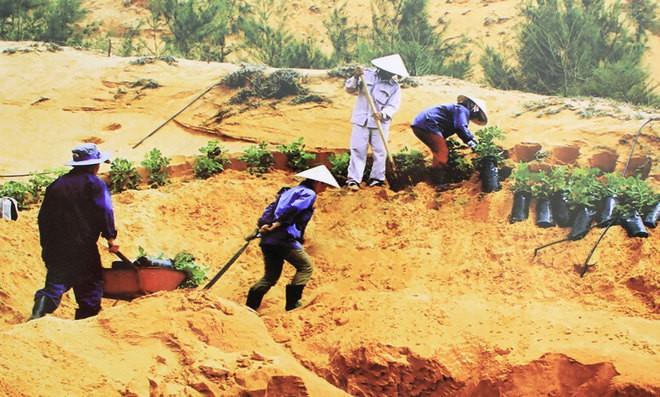 Những bức ảnh về sự biến đổi môi trường sống ở Việt Nam - ảnh 2