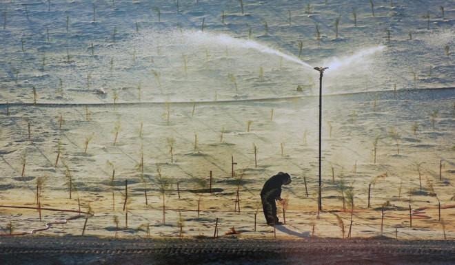 Những bức ảnh về sự biến đổi môi trường sống ở Việt Nam - ảnh 8
