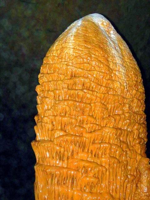 Bí ẩn những hình thù kỳ bí trong hang Phong Nha - ảnh 4