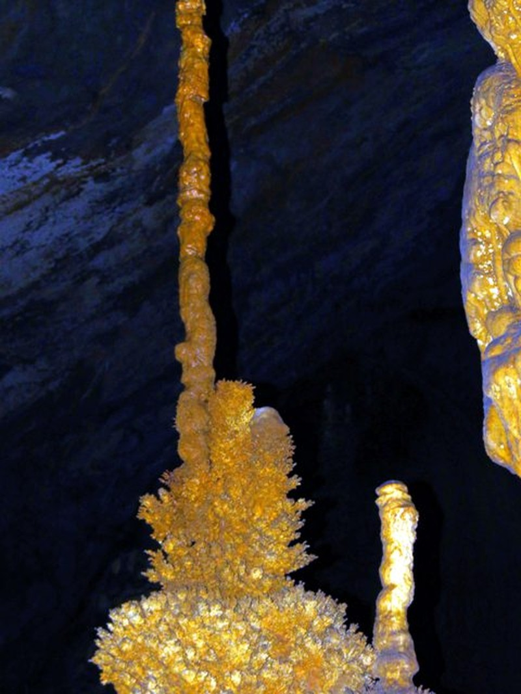 Bí ẩn những hình thù kỳ bí trong hang Phong Nha - ảnh 5