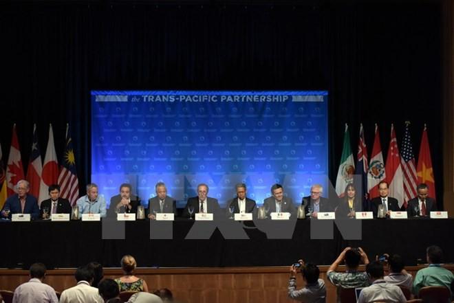 Đàm phán TPP kết thúc: Chưa tháo gỡ được bất đồng - ảnh 1