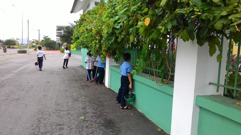Học sinh vạ vật quanh cổng trường chờ học buổi hai - ảnh 1
