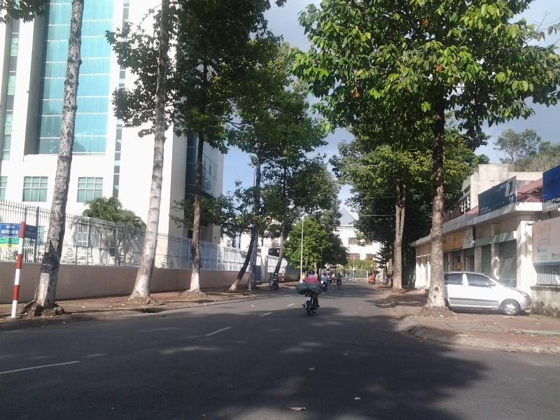 Bình yên ở con đường ngắn nhất Biên Hòa - ảnh 1
