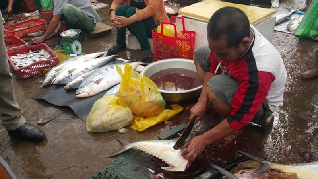 Dân ùn ùn đổ ra chợ vì ngư dân trúng đậm cá bẹ xước  - ảnh 4