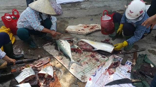 Dân ùn ùn đổ ra chợ vì ngư dân trúng đậm cá bẹ xước  - ảnh 7