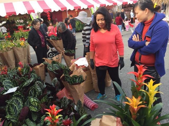 Chợ hoa 'rất Việt Nam' ngay trên đất Mỹ - ảnh 4