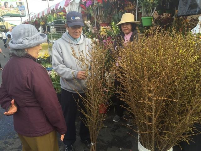 Chợ hoa 'rất Việt Nam' ngay trên đất Mỹ - ảnh 7