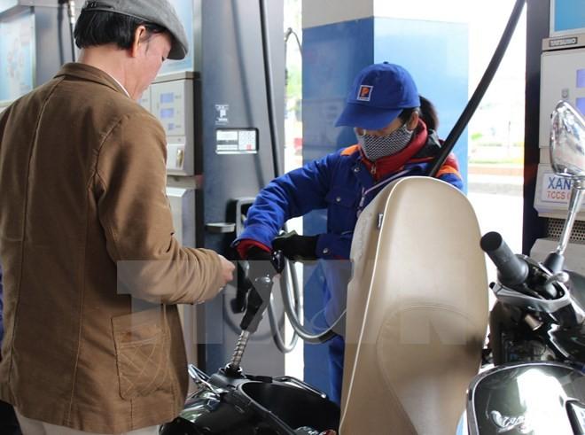 Công bố lý do nhiều xe bị chết máy khi dùng xăng từ Petrolimex Sài Gòn - ảnh 1