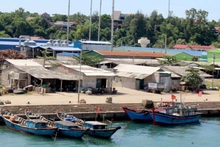 Chợ cá lớn vắng bóng tiểu thương sau vụ 25 tấn cá nục nhiễm phenol - ảnh 3
