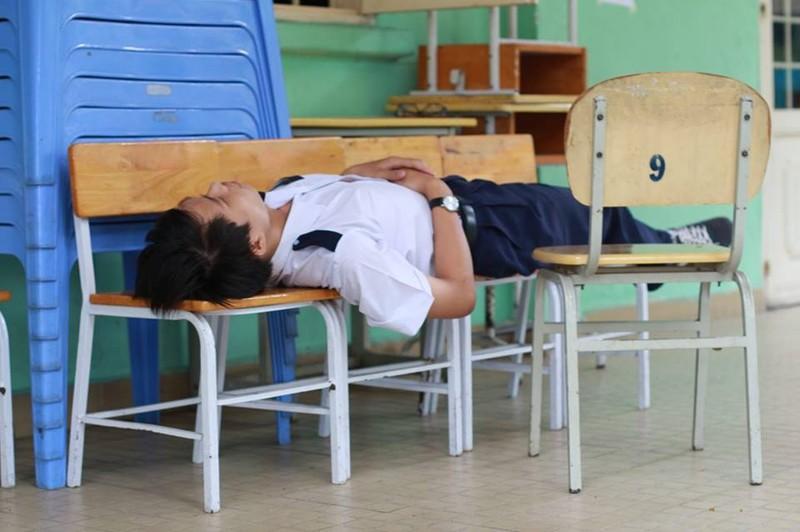 Thương những giấc ngủ thí sinh  - ảnh 9