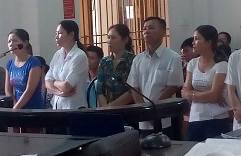 Đề nghị hủy án vụ tám người bị tù vì chặt 12 cây tràm - ảnh 1