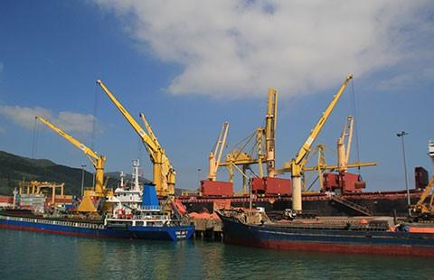 Cảng Đà Nẵng từ chối vay ODA vì sợ lỗ  - ảnh 1
