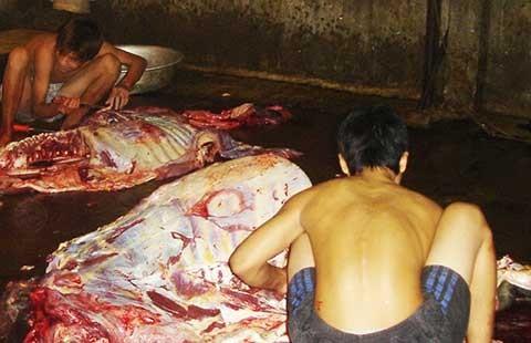 Bỏ kiểm dịch, lo ngại thịt bẩn tung hoành - ảnh 1