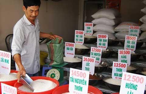 Cách phát hiện gạo giả, gạo nhựa Trung Quốc - ảnh 1