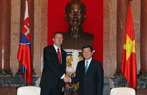 Việt Nam-Slovakia thúc đẩy hợp tác quốc phòng - ảnh 1