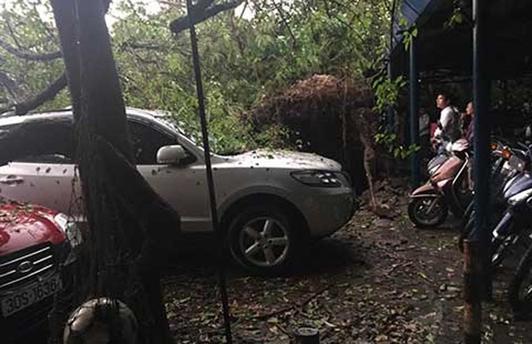 Hà Nội: Giông lốc khủng khiếp, cây đổ, xe lật, nhà bật móng - ảnh 3