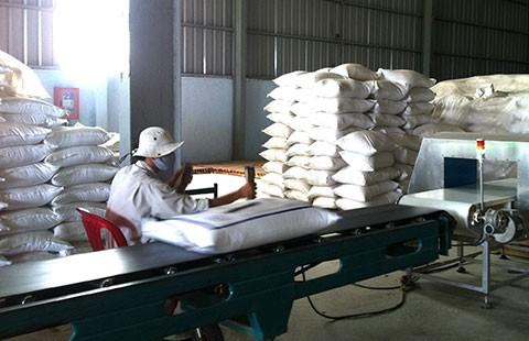 Gạo Việt tắc đầu ra vì phụ thuộc Trung Quốc - ảnh 1