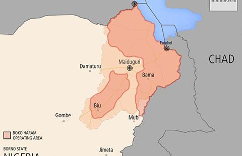 Các nước châu Phi bắt tay đánh Boko Haram - ảnh 1