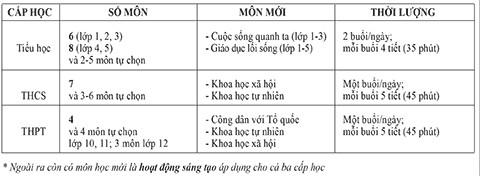 Dự thảo chương trình giáo dục phổ thông tổng thể: HS mừng, GV lo - ảnh 6